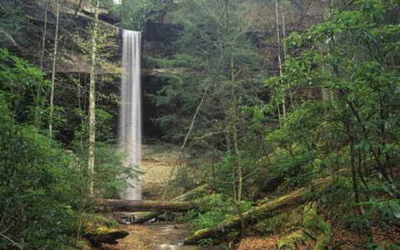 природа, ky, водопады, лес, водопад, пейзажи -, yahoo, штата, кумберленд, живописные, мире,