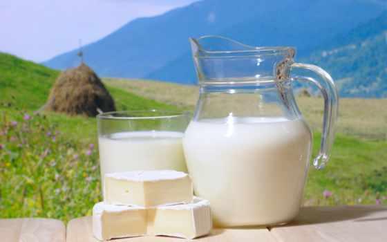 milk, следы, интересные, молоке, фактов, козье,