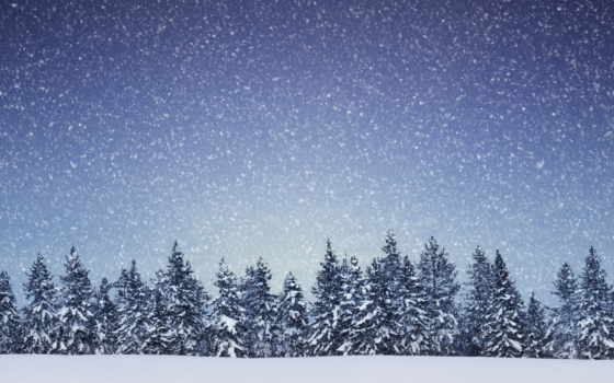 снег, снежинки, trees, ёль, хвойный, landscape, лес, winter, природа,