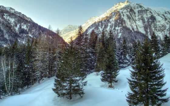 горы, альпы, austrian, снег, trees, лес, природа, winter, ёль,