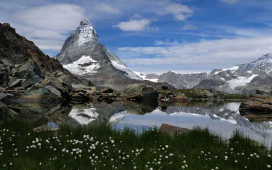 цветы, природа, горы
