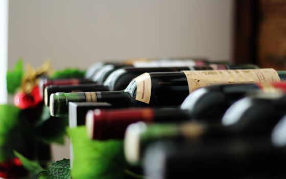 вино, business, бутылка, мякоть,