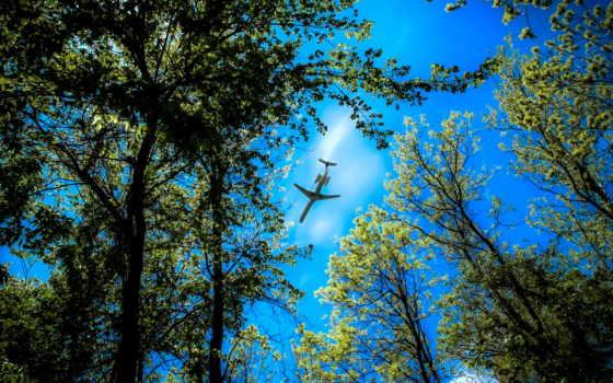 небо, деревя, самолёт