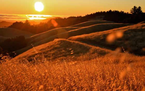 холмы, закат, sun, калифорния, травы, блики, ocean,