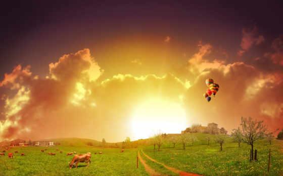 sun, природа, rising