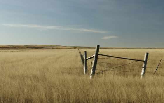 забор, поле, free