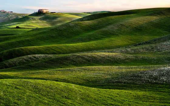 tuscany, landscape, природа, prairie, italy, pin,