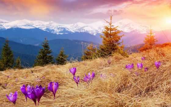 весна, sonnenaufgang, online, снег, загружено, уже, лучшая, коллекция, puzzle, весенние,