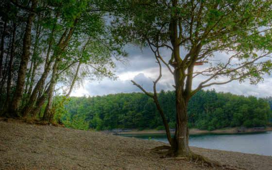 природа, реки, германия