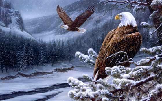 eagles, живопись, розмарин
