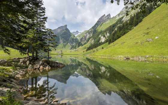 горы, лес, альпы, горное, дек, озеро, seealpsee,