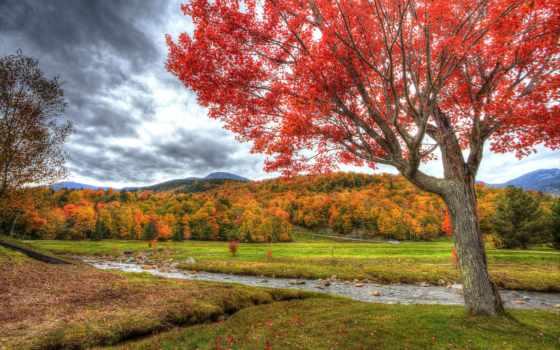 природа, пейзажи -, страница, осень, александр, garden, фотографий, полушин,