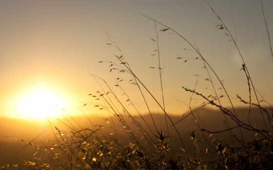 утро, хороший, quotes, wishes, her, images, ночь, pinterest, смс,