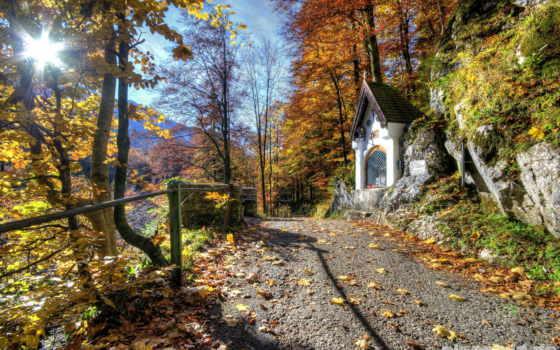 chapel, лесу, sledge, art, лес, лошадь, отдых, свет, снег, lodge,