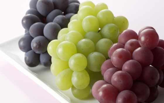 виноград, meal, плод, еда, вино, ягода