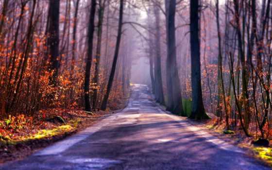 дорога, туман Фон № 33640 разрешение 1920x1200