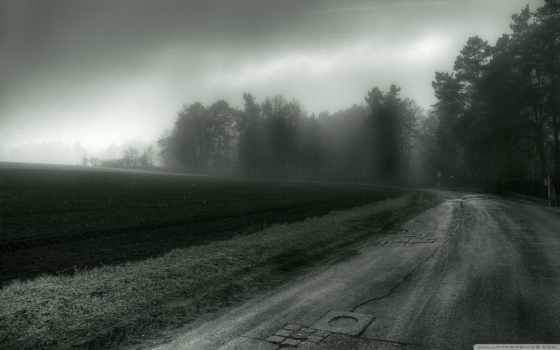 дорога, картинка, деревья