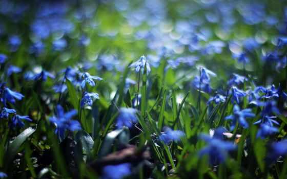wenatchee, outdoors, you, май, ан, this, was, медитация,