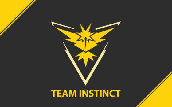 pokemon, zapdos, instinct, команда, gif, рубашка,