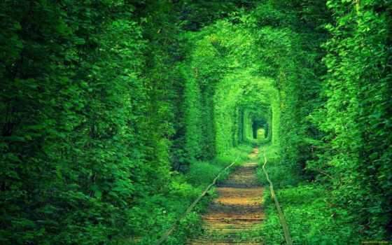 ukrainian, природа, pic, любви, украины, страница, туннель, природы, красивые, possible,