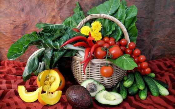 производить, натюрморт, помидоры, фрукты, огурцы, корзина, еда, тыква, перец, ягоды, карзина,