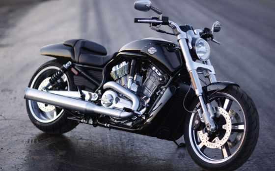 davidson, harley, pinterest, rod, bikes, muscle, об, modelos, uma, motos,