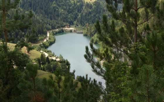 озеро, лесу
