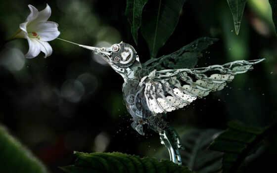 robot, механизм, цветы