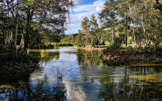 hungarian, природа, landscape, пруд, hdr, park, gyongyos,