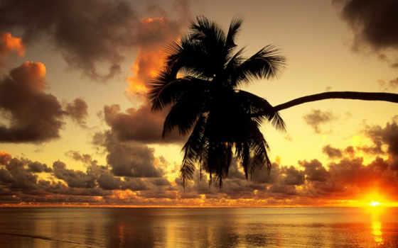 природа, return, смотреть, назад, закат