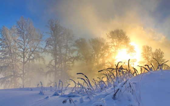 снег Фон № 40327 разрешение 2560x1600
