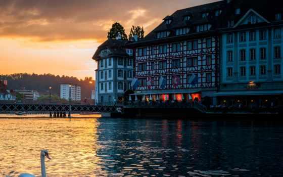 швейцария, лебедь, вечер