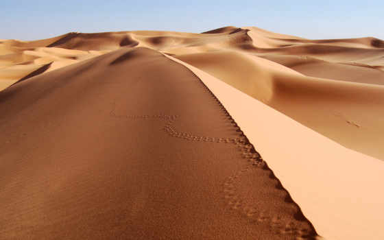 пустыня, free, deserts, live, desktop,