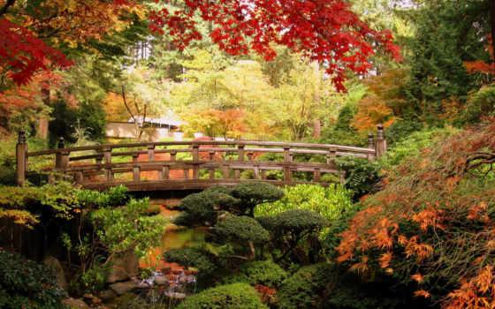 portland, картинка, природа, maple, japanese, изображение, usa, мосты, сады,