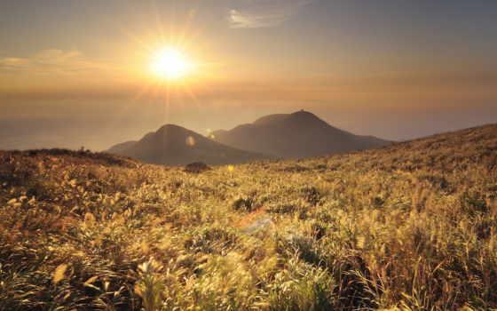 утро, трава, горы