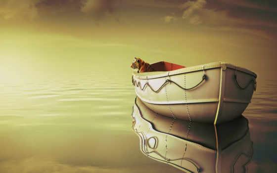 лодка, тигр, море
