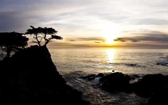 cliff, море, лет