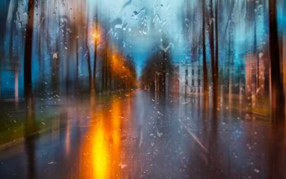 lluvia, una, través, вентана, observando, природа, вечер, noche,