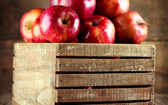 manzanas, stock