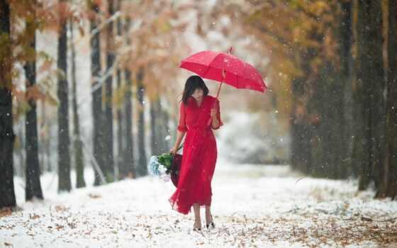 дождь, снег, хороший, narrow, дорогой, цветы, девушка, праздник, красное