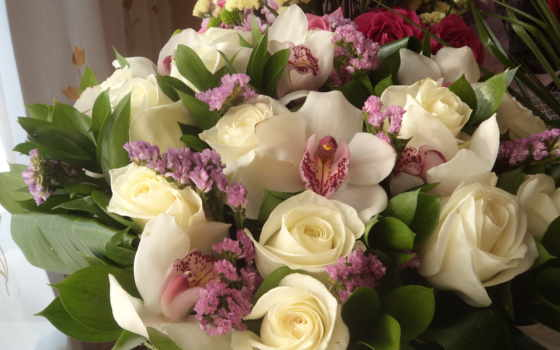 розы, цветы, букеты Фон № 56650 разрешение 2048x1536