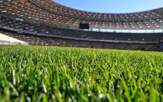трава, футбольная, футбольных, поле, полей,