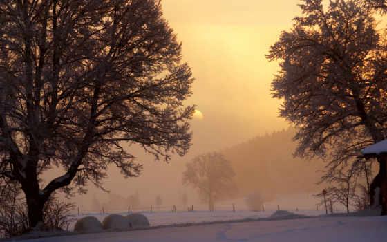 winter, рассвет, взгляд