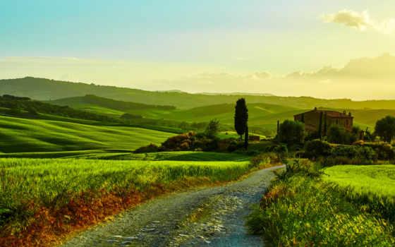 italy, поля, tuscany, trees, дорога, house, scenery, природа,