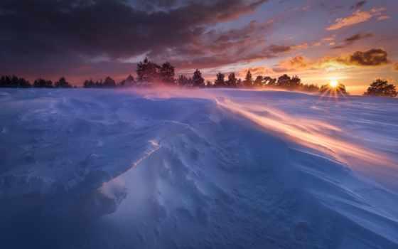 winter, снег, sun, trees, природа, холод, утро, телефон,