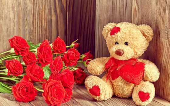 розы, плюшевый, мишка, букет, роз, красные, день, cvety, доски, valentine, святого,