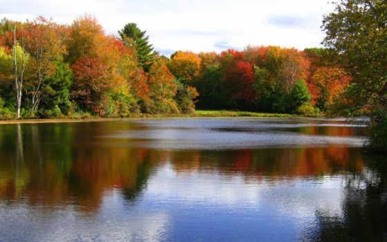 осень, октябрь, природа
