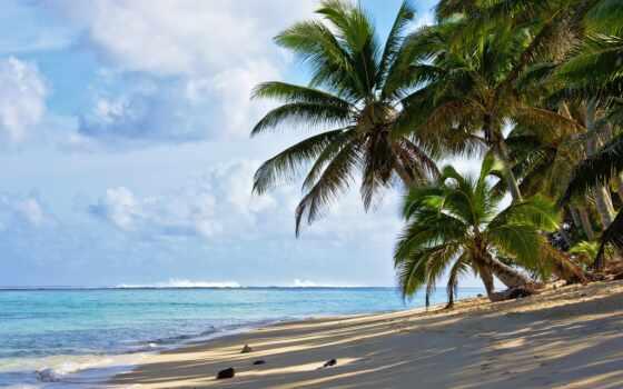 остров, песок, favorite, ton, awesome, также, upload, фон, пожаловаться