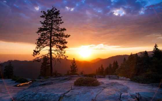 закат, горы, landscape, сосны, пейзажи, солнце,