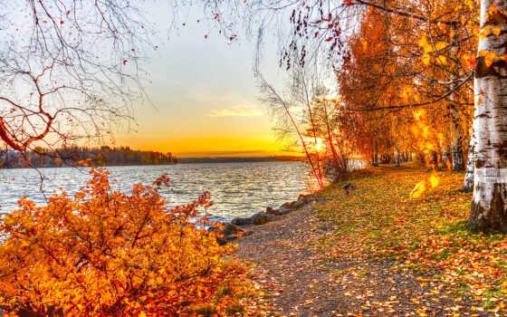 природа, осень Фон № 31808 разрешение 1920x1080